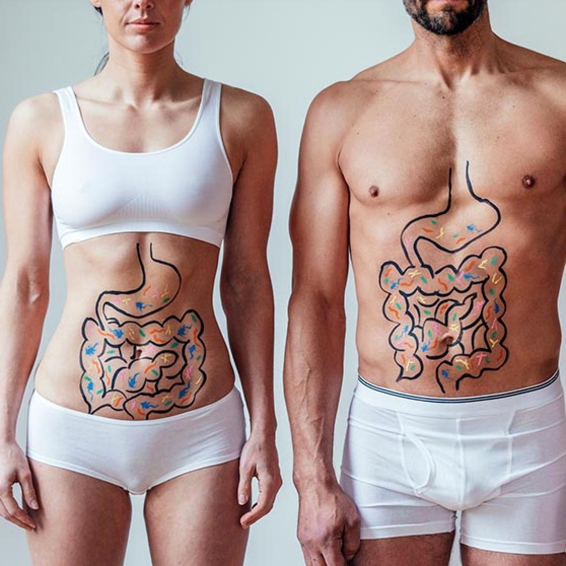 Der Darm und unsere Gefühle